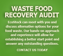 Waste Food Audit
